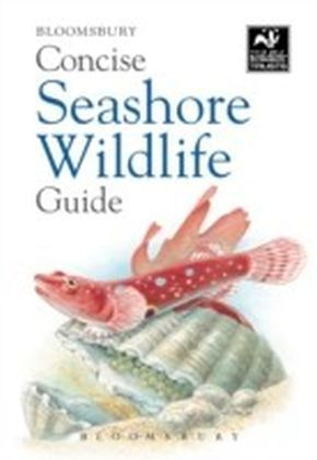 Concise Seashore Wildlife Guide