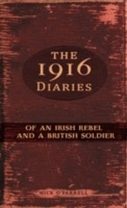 1916 Diaries of an Irish Rebel and a British Soldier