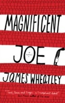 Magnificent Joe