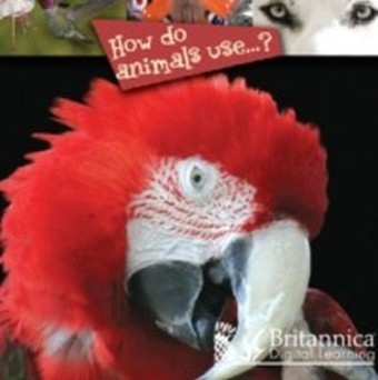 How Do Animals Use...?