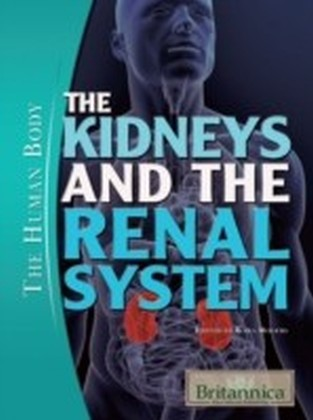 Kidneys and the Renal System