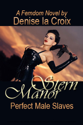 Stern Manor: Perfect Male Slaves
