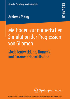 Methoden zur numerischen Simulation der Progression von Gliomen