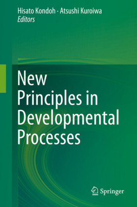 New Principles in Developmental Processes