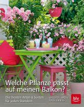 Welche Pflanze passt auf meinen Balkon? Cover