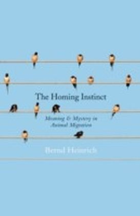 Homing Instinct: The Story and Science of Migration
