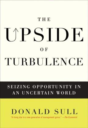 Upside of Turbulence