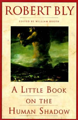 Little Book on the Human Shadow