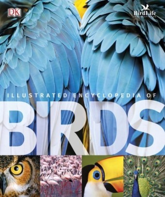 Illustrated Encyclopedia of Birds