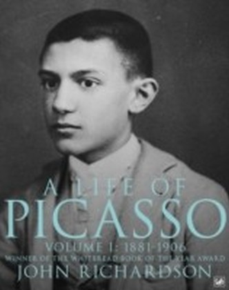 Life Of Picasso Volume I