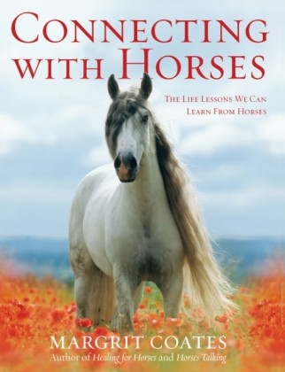 Connecting with Horses