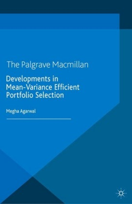 Developments in Mean-Variance Efficient Portfolio Selection