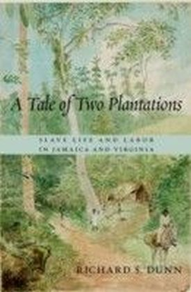 Tale of Two Plantations