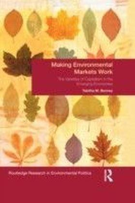 Making Environmental Markets Work