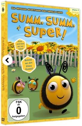 SUMM, SUMM, SUPER! - Die großen Abenteuer der Familie Biene, 1 DVD
