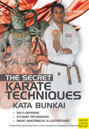 The Secret Karate Techniques - Kata Bunkai
