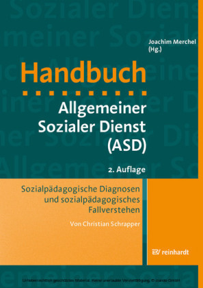 Sozialpädagogische Diagnosen und sozialpädagogisches Fallverstehen