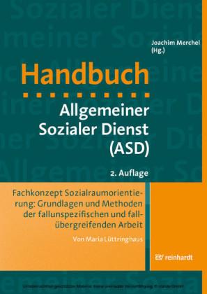 Fachkonzept Sozialraumorientierung: Grundlagen und Methoden der fallunspezifischen und fallübergreifenden Arbeit