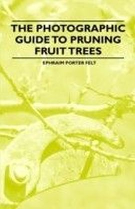 Photographic Guide to Pruning Fruit Trees