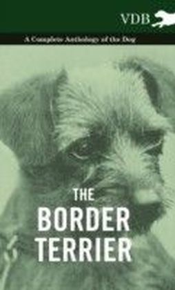 Border Terrier - A Complete Anthology of the Dog -