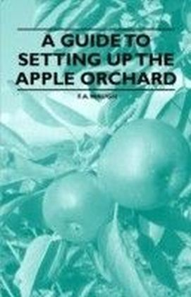 Guide to Setting Up the Apple Orchard
