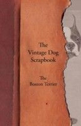 Vintage Dog Scrapbook - The Boston Terrier