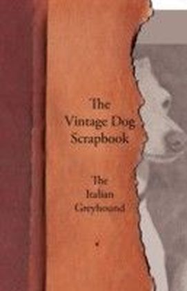 Vintage Dog Scrapbook - The Italian Greyhound