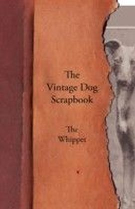 Vintage Dog Scrapbook - The Whippet