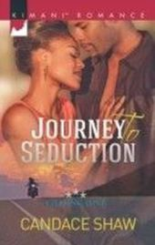 Journey to Seduction (Mills & Boon Kimani) (Chasing Love - Book 2)