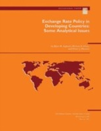 Exchange Rate Policy in Developing Countries: Some Analytical Issues
