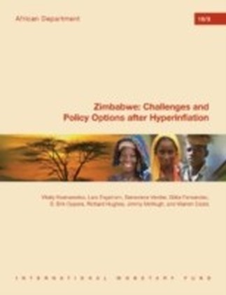 Zimbabwe: Challenges and Policy Options after Hyperinflation