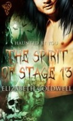 Spirit of Stage 13