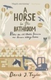 Horse in the Bathroom