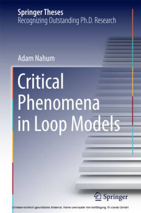 Critical Phenomena in Loop Models