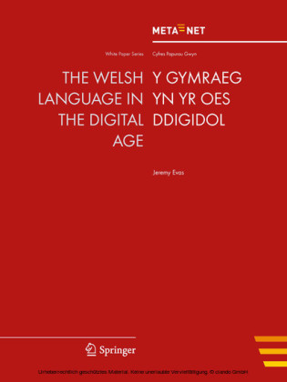 The Welsh Language in the Digital Age