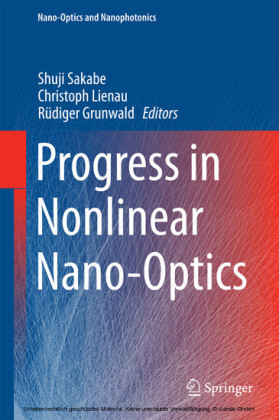 Progress in Nonlinear Nano-Optics