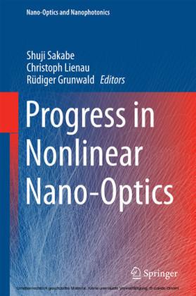 Progress in Nonlinear Nano-Optics