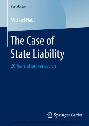 The Case of State Liability