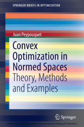 Convex Optimization in Normed Spaces