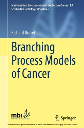Branching Process Models of Cancer