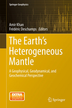 The Earth's Heterogeneous Mantle