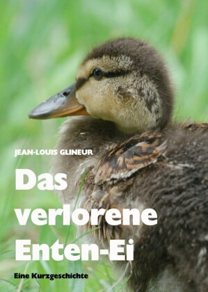 Das verlorene Enten-Ei