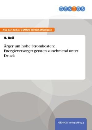 Ärger um hohe Stromkosten: Energieversorger geraten zunehmend unter Druck