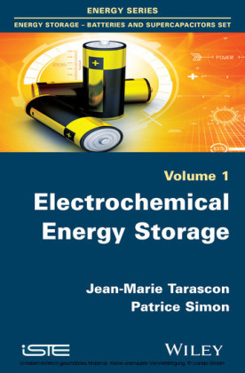 Electrochemical Energy Storage