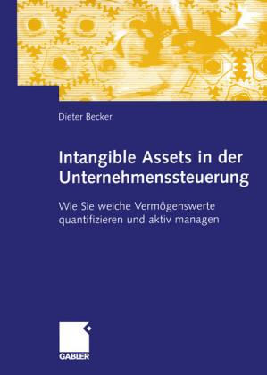 Intangible Assets in der Unternehmenssteuerung