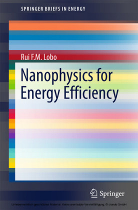 Nanophysics for Energy Efficiency