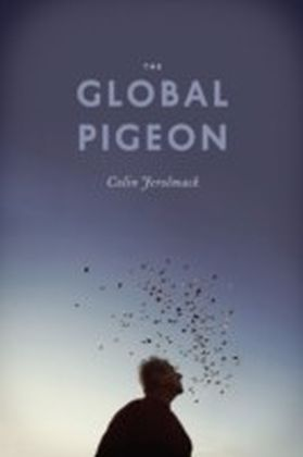 Global Pigeon