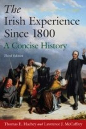 Irish Experience Since 1800: A Concise History