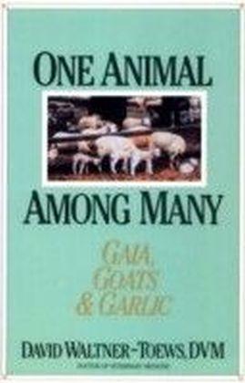 One Animal Among Many