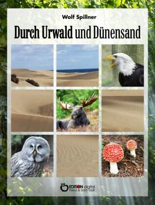 Durch Urwald und Dünensand